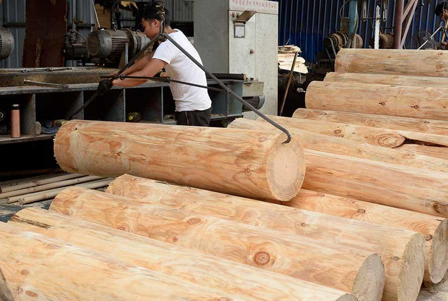 桉木比松木建筑西甲赞助商ballbet贝博对比优势