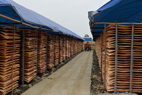 生产建筑模板的厂家