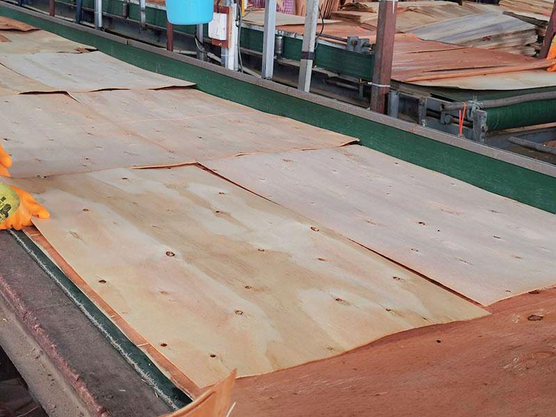 广西地区建筑模板价格多少?木模板价格区间