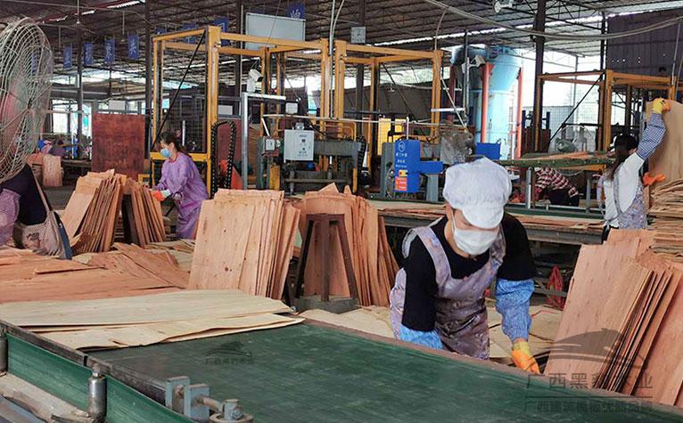 使用单板生产的建筑木模板厂家