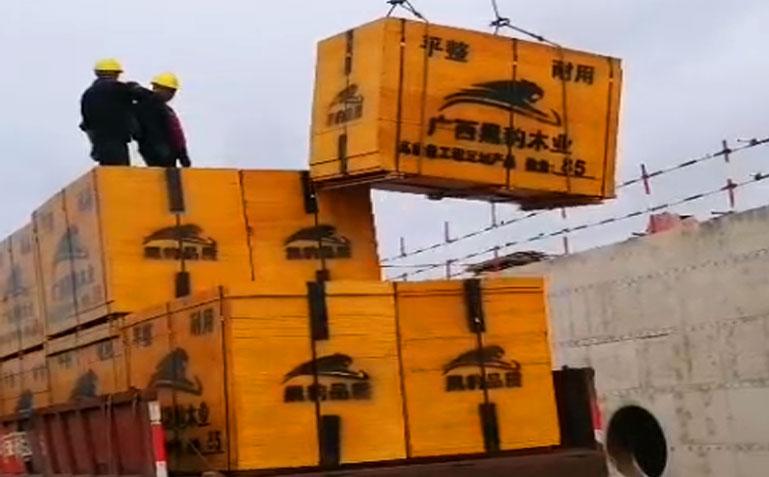 工程项目正在使用黑豹建筑模板